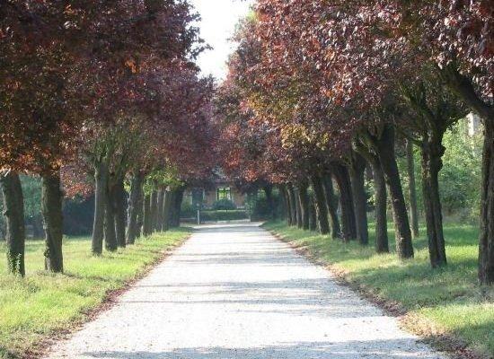 Agriturismo Villa Gropella - фото 12