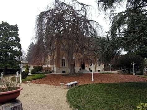 Park Hotel Villa Salzea - фото 20