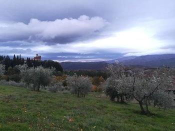 Castello Di Valenzano - фото 15