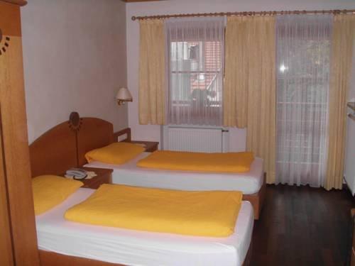 Hotel Alte Muhle - фото 3
