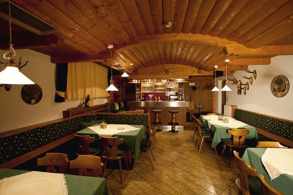 Hotel Alpenhof - фото 7
