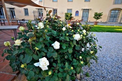 Agriturismo San Rocco - фото 18