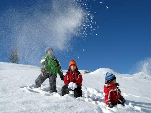 Alpine Chalet Sauter - фото 22