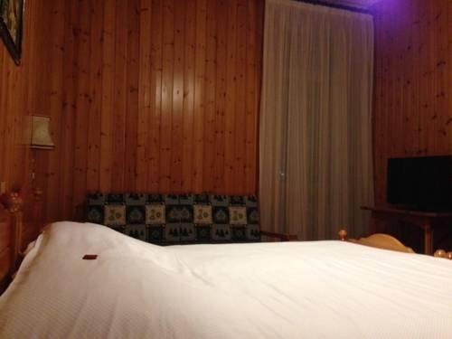 Hotel Vioz - фото 11