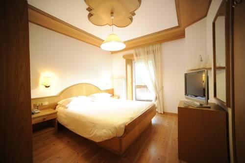 Hotel Vioz - фото 9