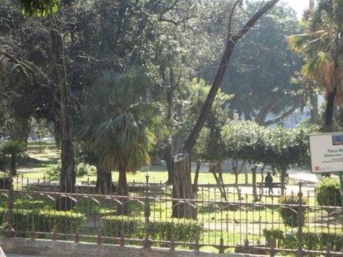 Jardin De France - фото 21