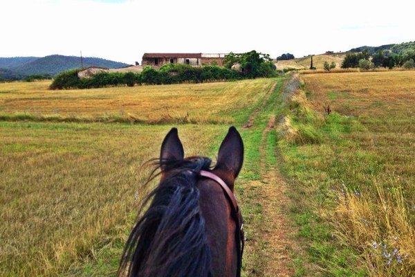 Agriturismo San Ottaviano - фото 21