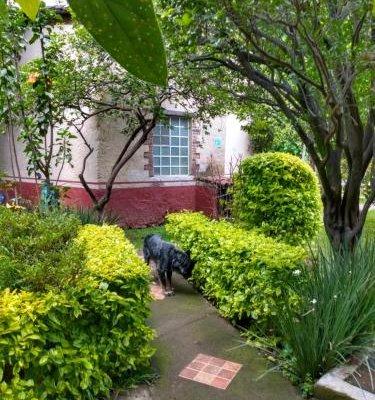Hotel Casa Pomarrosa - фото 13
