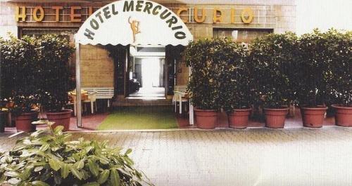 Hotel Mercurio - фото 18