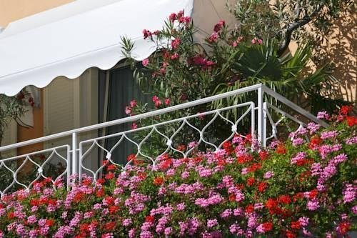 Hotel Isabella - фото 7