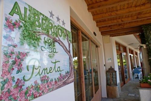 Albergo La Pineta - фото 12
