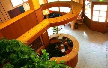 Hotel Alex - фото 8