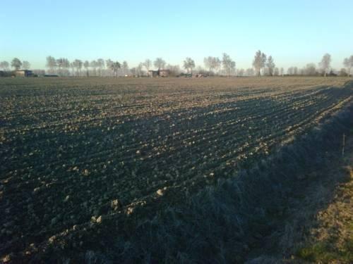 Agriturismo Alla Casella - фото 20