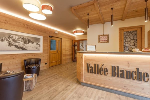 Hotel Vallee Blanche - фото 15