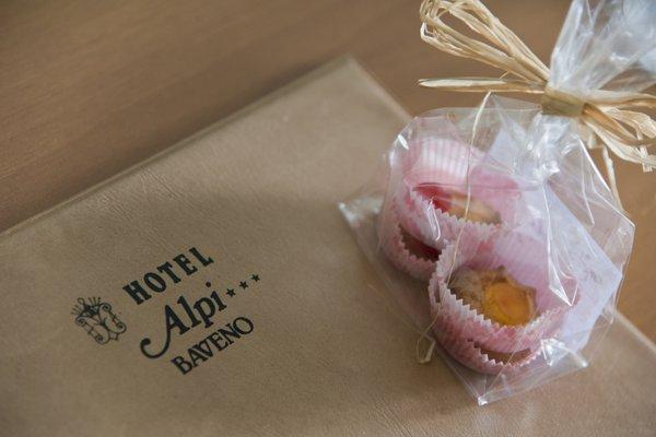 Hotel Alpi - фото 13