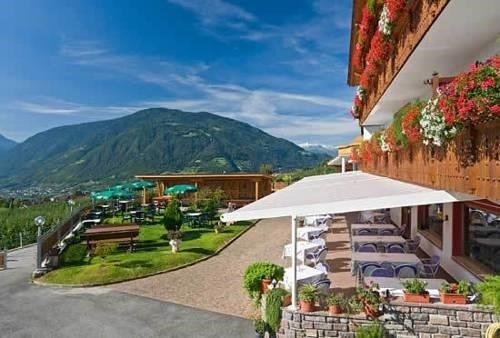 Hotel Stefanie - фото 9