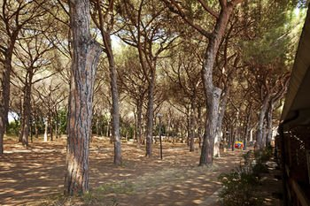 Village Golfo degli Etruschi - фото 20