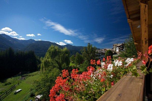 Albergo Bellaria - фото 11