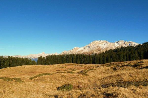 Albergo Bellaria - фото 12