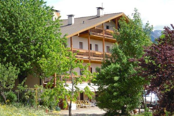 Albergo Bellaria - фото 15