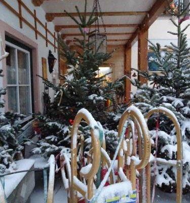 Hotel-Garni Schernthaner - фото 17