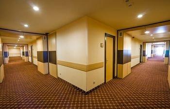 Ломсия отель - фото 19