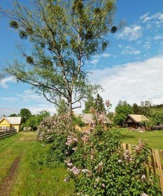 Country House Ziogeliai - фото 17
