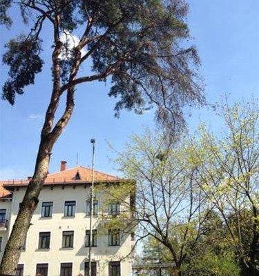 Vilnius Center Apartment - Embassy - фото 1