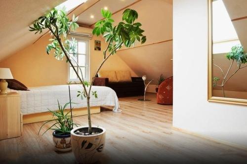 Trakaitis Apartments - фото 5