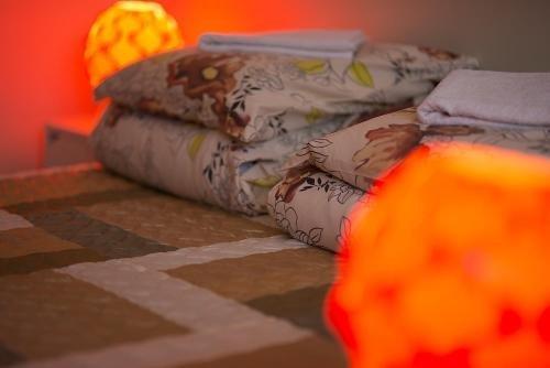 Guest House Drusva - фото 15