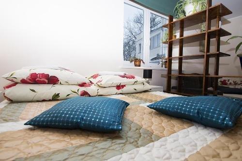 Guest House Drusva - фото 22