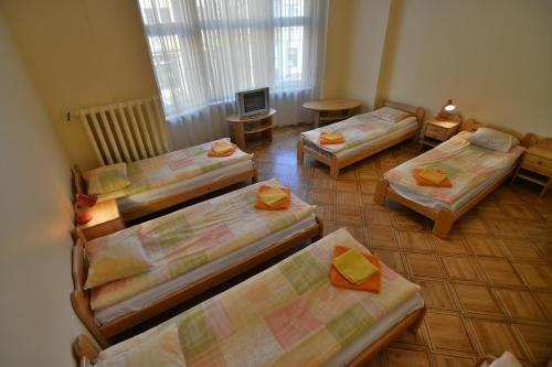 Hotel Multilux - фото 1