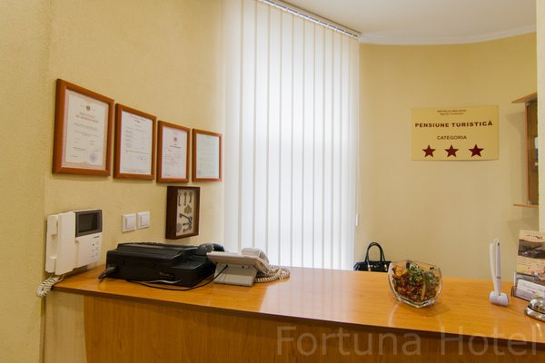 Отель Фортуна - фото 17