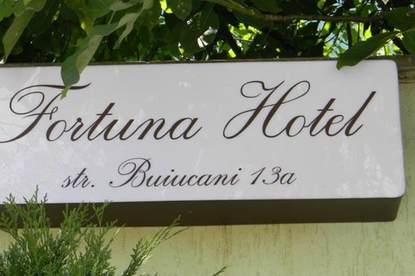 Отель Фортуна - фото 18