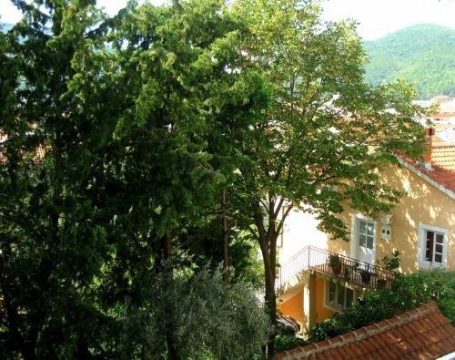 Villa Seka - фото 20