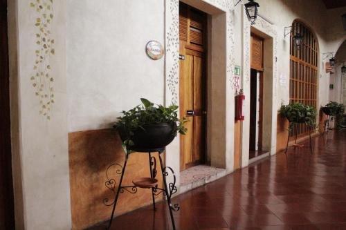 Hotel Anua Oaxaca - фото 4