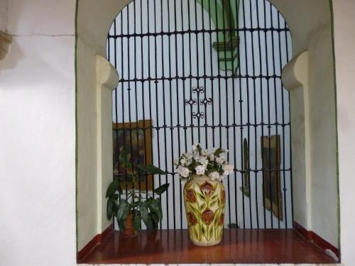 Hotel Monte Alban - Solo Adultos - фото 3
