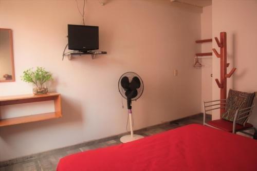 Hostel Lit Guadalajara - фото 5