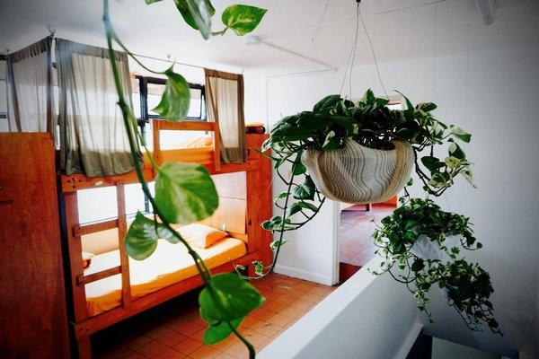 Blue Pepper Hostel & Bar - фото 50
