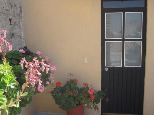 Mezcalito Blue Hostel - фото 21