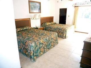 Hotel Bajo el Volcan - фото 1