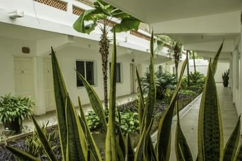 Hotel Casa Blanca - фото 22