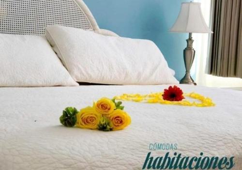 Hotel del Paseo Campeche - фото 5