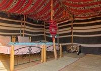 Отзывы Desert Retreat Camp