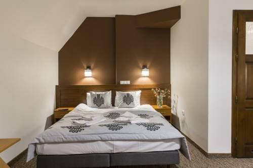 Hotel Willa Pod Skocznia - фото 3
