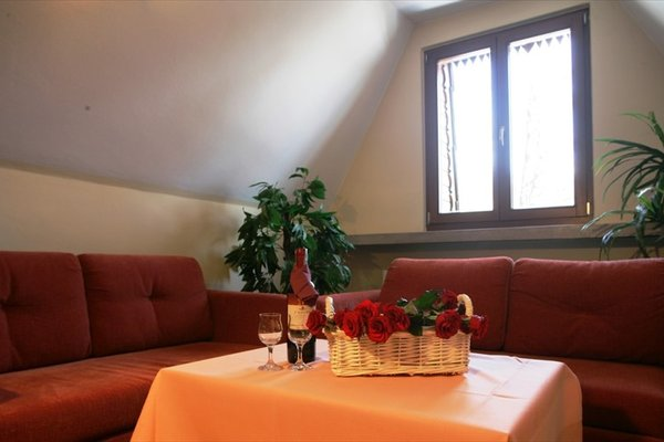 Hotel Boruta - фото 5