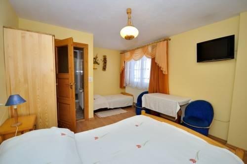 Pokoje Goscinne Pod Lipa - фото 1