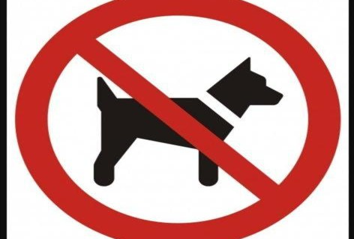 Apartamenty Tatra View - фото 8