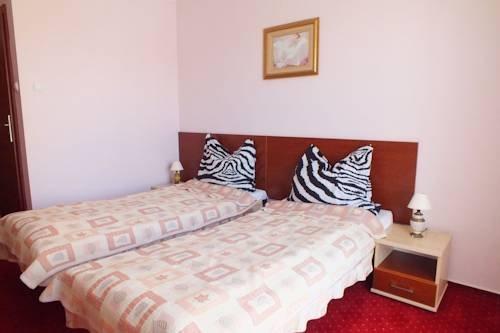 Hotel Aleksander - фото 1