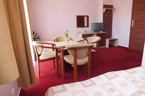 Hotel Aleksander - фото 3
